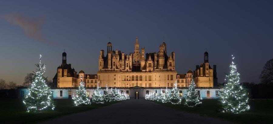 Sapins de Noël illuminés dans les allées du domaine de Chambord