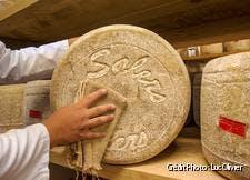 Une meule de Salers, un fromage frais au lait cru de vache