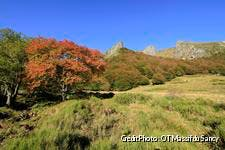 la vallée de Chaudefour en automne