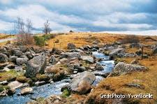 Rivière de l'Aubrac